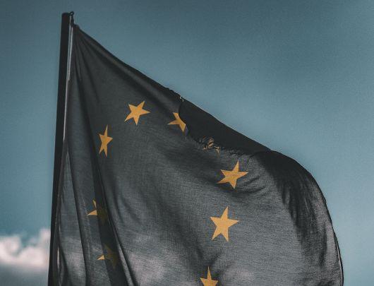 Winkler salută includerea drepturilor fundamentale și a solidarității între prioritățile președinției germane a UE