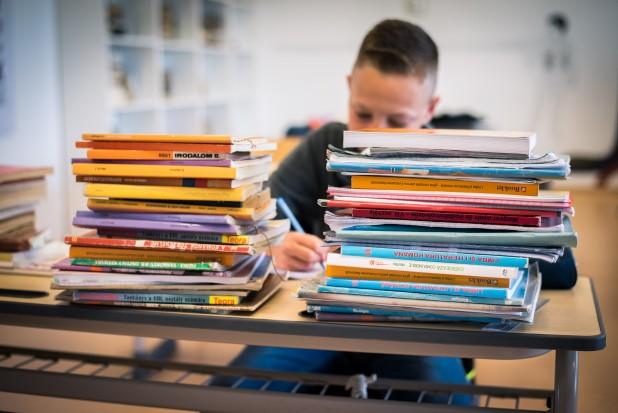 A apărut ordinul ministrului Educației privind retipărirea manualelor şcolare pentru învăţământul preuniversitar